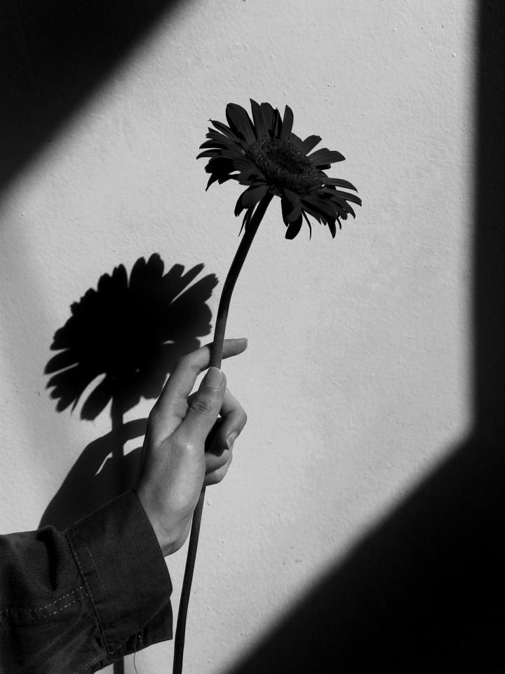 'flower,